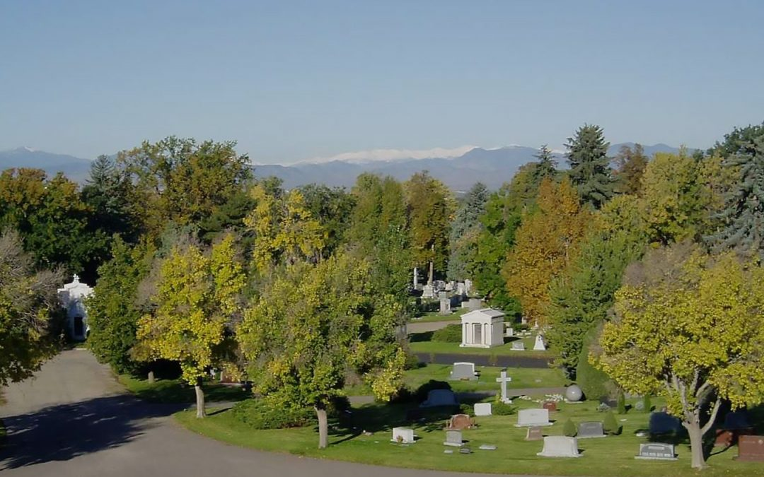 I was running through the cemetery just after dawn this morning and was pondering how curious we humans are.